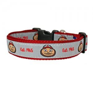 Brutus-dog-collar-110215